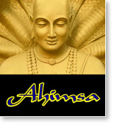 "Post image for TM & the effect of ""ahimsa"" in the Yoga Sutra"